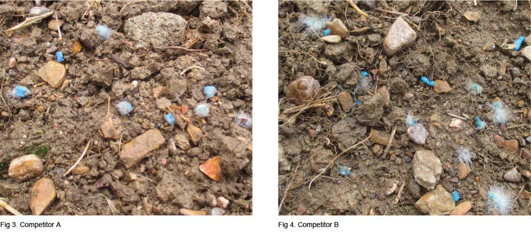 mold formation on competitors snail pellets